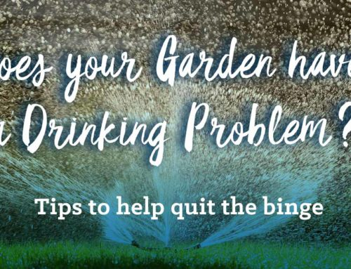 Does your garden have a drinking problem?