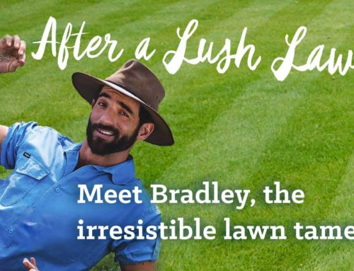 Is your lawn drinking you dry?
